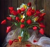 Ainda vida com flores da mola: tulipas e narcissuses Fotografia de Stock Royalty Free