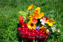 Ainda vida com flores e cereja Fotos de Stock Royalty Free