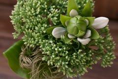 Ainda vida com flores e o lírio verdes em um fundo de madeira Fotografia de Stock