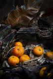 Ainda vida com fruta Imagens de Stock Royalty Free