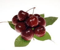 Ainda vida com frutas Fotografia de Stock Royalty Free