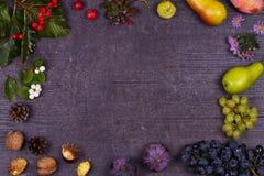 Ainda vida com frutos e morangos - maçãs, ameixas, uva, peras, folhas, cones do pinho, figos, flores, castanhas Vista superior Ru Imagem de Stock Royalty Free