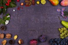 Ainda vida com frutos e morangos - maçãs, ameixas, uva, peras, folhas, cones do pinho, figos, flores, castanhas Vista superior Ru Foto de Stock Royalty Free