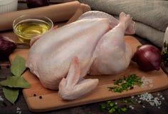 Ainda vida com galinha e a especiaria cruas Foto de Stock
