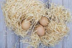 Ainda a vida com galinha eggs em aparas de madeira Imagem de Stock Royalty Free