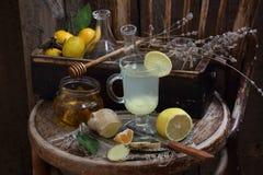 Ainda vida com gengibre, limão, mel e ervas de Provence Imagens de Stock Royalty Free