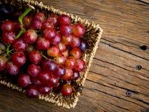 Ainda vida com grupo de uvas frescas Fotos de Stock Royalty Free
