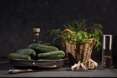Ainda vida com ingredientes para uma salada Imagens de Stock Royalty Free