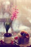 Ainda vida com jacinto cor-de-rosa e os carretéis de madeira da linha Fotos de Stock Royalty Free
