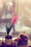 Ainda vida com jacinto cor-de-rosa e os carretéis de madeira da linha Fotografia de Stock