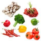 Ainda-vida com legumes frescos Foto de Stock Royalty Free