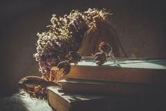Ainda a vida com livros e as flores secadas ofereceu na cor do vintage Fotografia de Stock Royalty Free