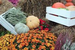 Ainda vida com lote das flores e dos vegetais do outono no feno Imagens de Stock