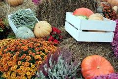 Ainda vida com lote das flores e dos vegetais do outono no feno Imagens de Stock Royalty Free