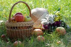 Ainda-vida com maçãs Imagens de Stock