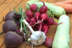Ainda vida com o close up fresco dos vegetais de raizes Imagem de Stock Royalty Free
