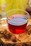 Ainda vida com o copo do chá quente em um fundo natural Imagens de Stock Royalty Free