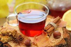 Ainda vida com o copo do chá quente em um fundo natural Fotos de Stock