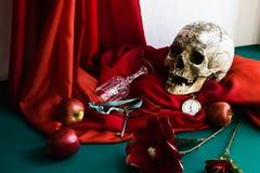 Ainda vida com o crânio ao estilo dos vanitas Fotografia de Stock Royalty Free