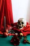 Ainda vida com o crânio ao estilo dos vanitas Fotografia de Stock