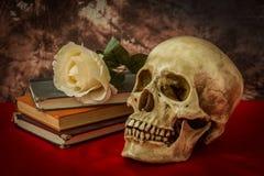 Ainda vida com o crânio humano com rosa do branco, livro velho Imagem de Stock