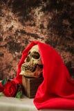 Ainda vida com o crânio humano com rosa do vermelho Foto de Stock