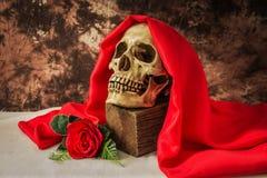 Ainda vida com o crânio humano com rosa do vermelho Imagem de Stock