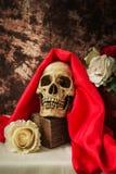 Ainda vida com o crânio humano com rosa do vermelho e rosa do branco Foto de Stock Royalty Free