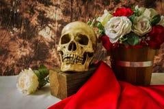 Ainda vida com o crânio humano com rosa do vermelho e rosa do branco Fotografia de Stock Royalty Free