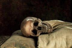 Ainda vida com o crânio humano no lado de você Imagem de Stock