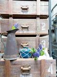 Ainda vida com o jacinto na madeira de armário do vintage Imagem de Stock Royalty Free