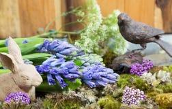 Ainda vida com o jacinto no fundo do musgo e da madeira em r rústico Imagens de Stock