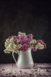 Ainda vida com o lilás roxo e branco no vaso branco na tabela cor-de-rosa, macro, planta de florescência da mola com pétalas Fotos de Stock Royalty Free