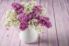 Ainda vida com o lilás roxo e branco no vaso branco na tabela cor-de-rosa, macro, planta de florescência da mola com pétalas Fotografia de Stock