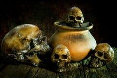 Ainda vida com o potenciômetro do crânio e de argila, produto de cerâmica Fotos de Stock