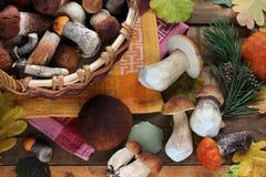 Ainda vida com os cogumelos na tabela, vista superior Imagens de Stock