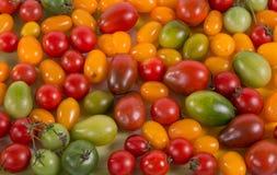 Ainda vida com os tomates diferentes da cor Imagem de Stock Royalty Free