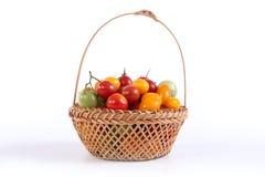 Ainda vida com os tomates diferentes da cor Fotografia de Stock