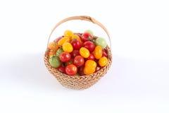Ainda vida com os tomates diferentes da cor Imagens de Stock