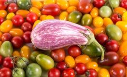 Ainda vida com os tomates e beringelas diferentes da cor Imagens de Stock