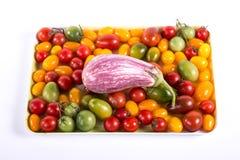 Ainda vida com os tomates e beringelas diferentes da cor Foto de Stock