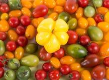Ainda vida com os tomates e pimenta diferentes da cor Fotos de Stock