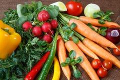 Ainda vida com os vários legumes frescos fotos de stock