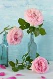 Ainda vida com pálido - rosas cor-de-rosa no vaso do vintage Fotografia de Stock
