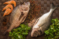 Ainda vida com peixes, camarão e especiarias Imagens de Stock