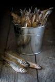 Ainda vida com peixes e cubeta em uma tabela de madeira Imagem de Stock