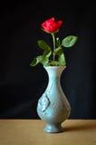 Ainda vida com Rosa Imagens de Stock Royalty Free