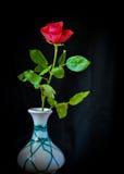 Ainda vida com Rosa Fotos de Stock Royalty Free