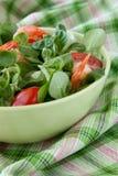 Salada com camarões Fotografia de Stock Royalty Free
