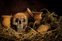 Ainda vida com ser humano um crânio na palha e no vaso Imagem de Stock